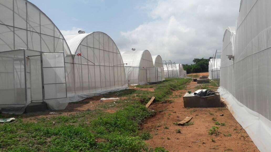 EnviroDome® in Ghana 4