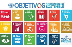 ODS ONU Alkaravan Design.png