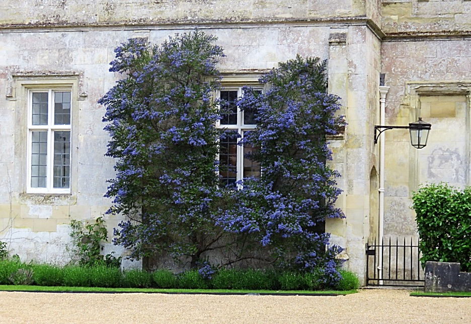 The Wilton House, Salisbury, England