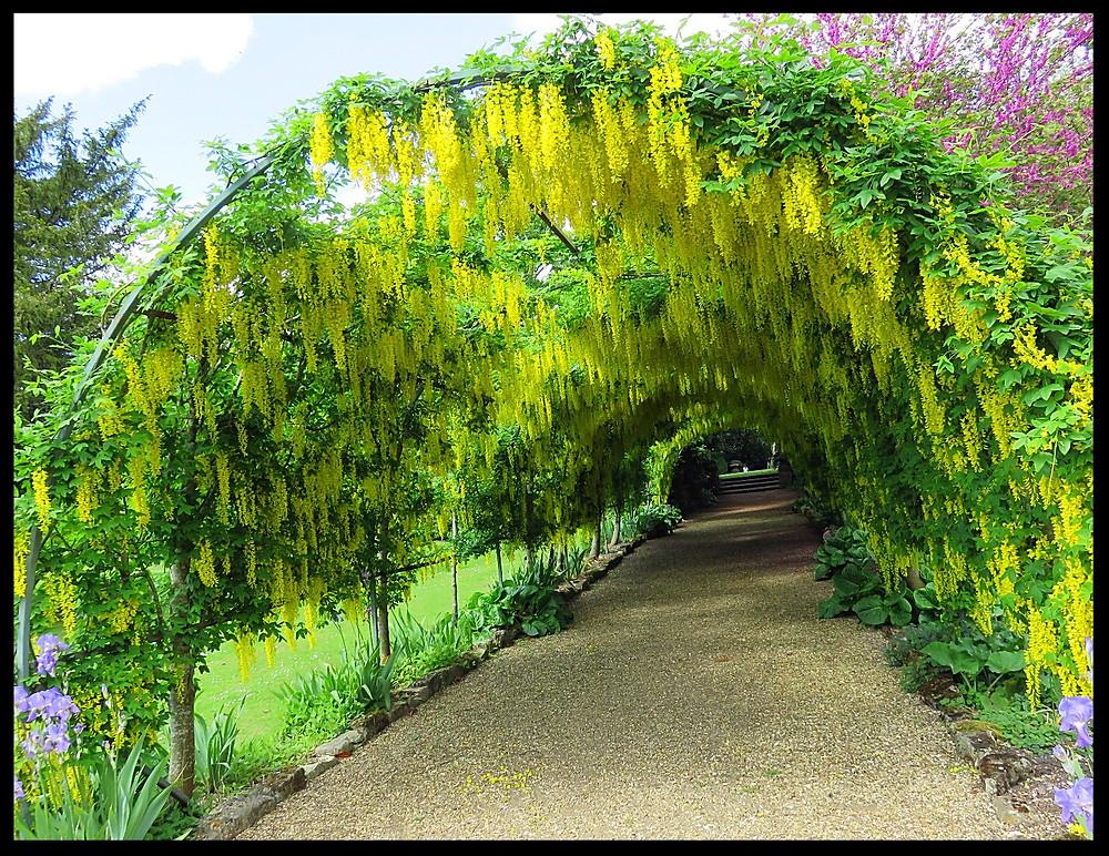 Gardens at the Wilton House, Salisbury, England