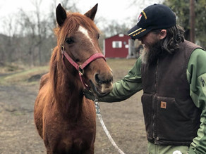 The Unbridled Heroes Project