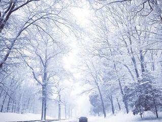 Speedwash's Winter Driving Tips.