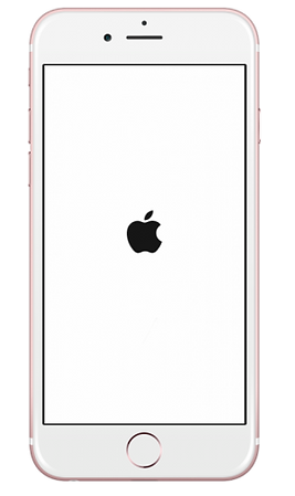iphone-apple-logo-whitebg-device.png