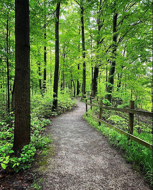 A picture taken at the Niagara Gorge. In the middle, there is a smooth dirt path that winds out in front. The left side of the path is lined with lush green trees and brush. The right side is lined with green trees, brush, and a wooden fence that follows the curve of the path.