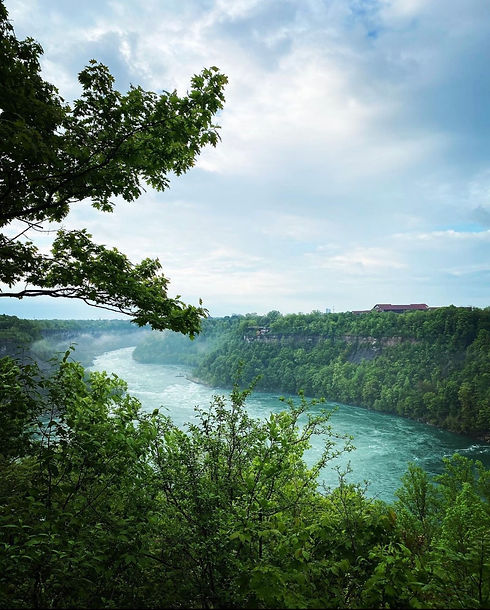 A picture taken at the Niagara Gorge. In the foreground there are green trees and bushes. In the distance there are green trees and brush lining the opposite side of the Gorge. Blue-green water is flowing rapidly along a curvy path between tree-lined rocks on both sides.
