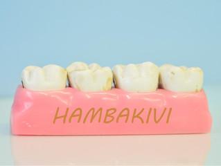 Hambakivi