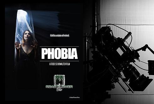 Development_Phobia_edited_edited.jpg