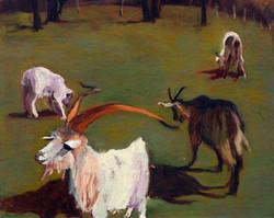 Les chèvres de Sceaux