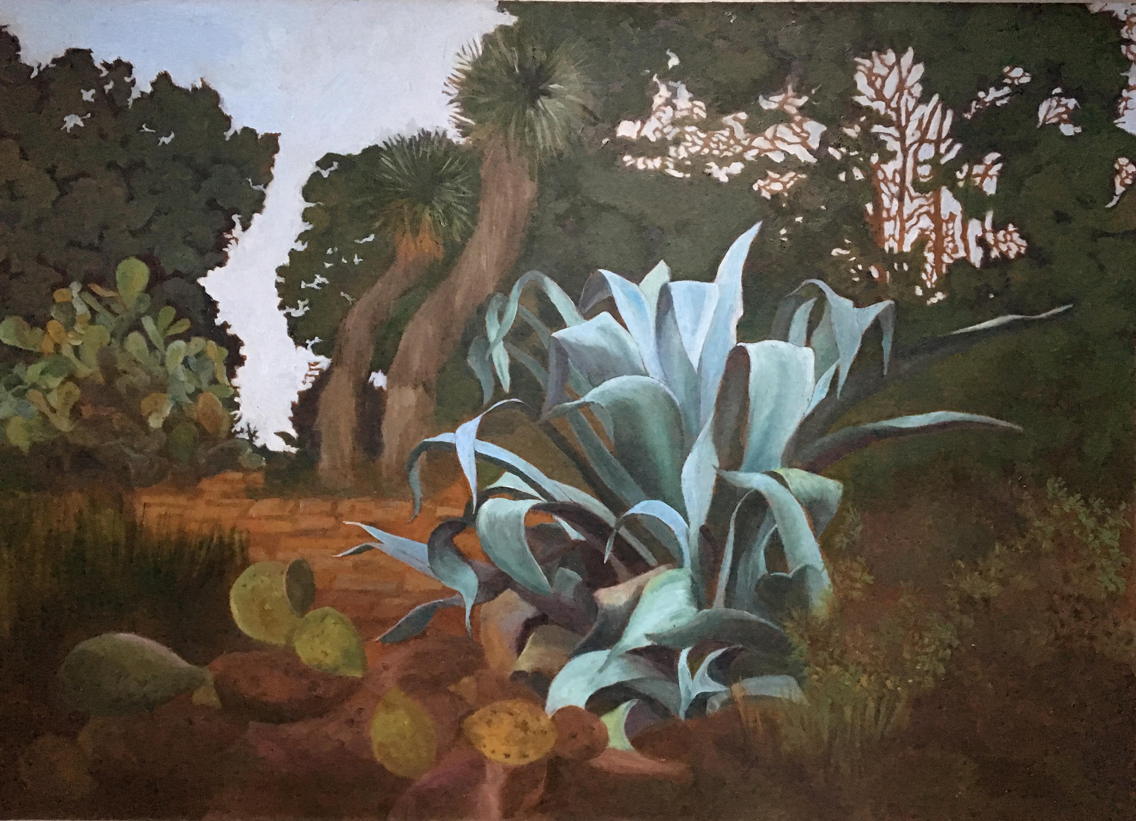 L'agave bouclée