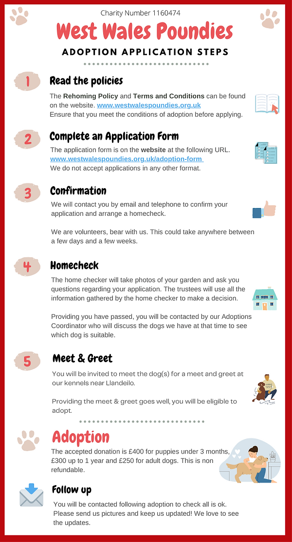Copy of WWP Adoption Steps (3).png