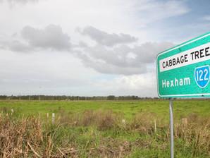 Berejiklian Government Refuses to Ban PFAS