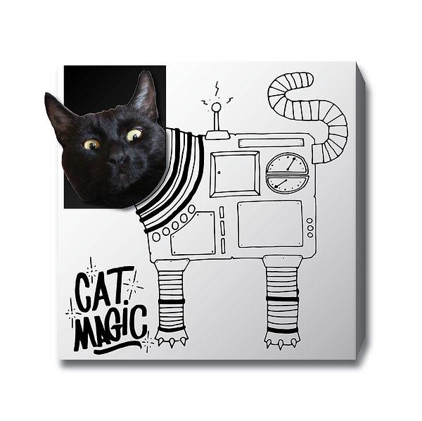 Robo Kitty.jpg