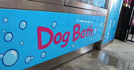 Looking for a pet shop with a FREE dog bath?