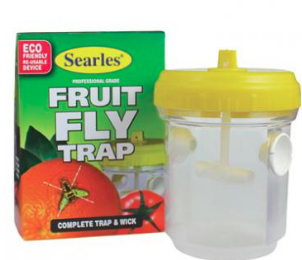 Searles Fruit Fly Trap