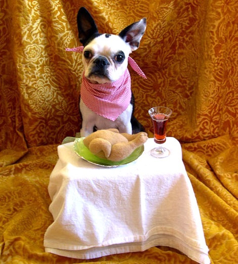 dog-friendly-dining2.jpg