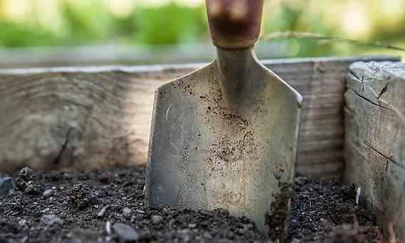 Garden Supplies, Nursery, Little Mountain, Plants, Garden Centre