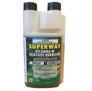 Superway Dicamba-M 1L