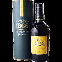 Brandy-Larios-1866_300.png