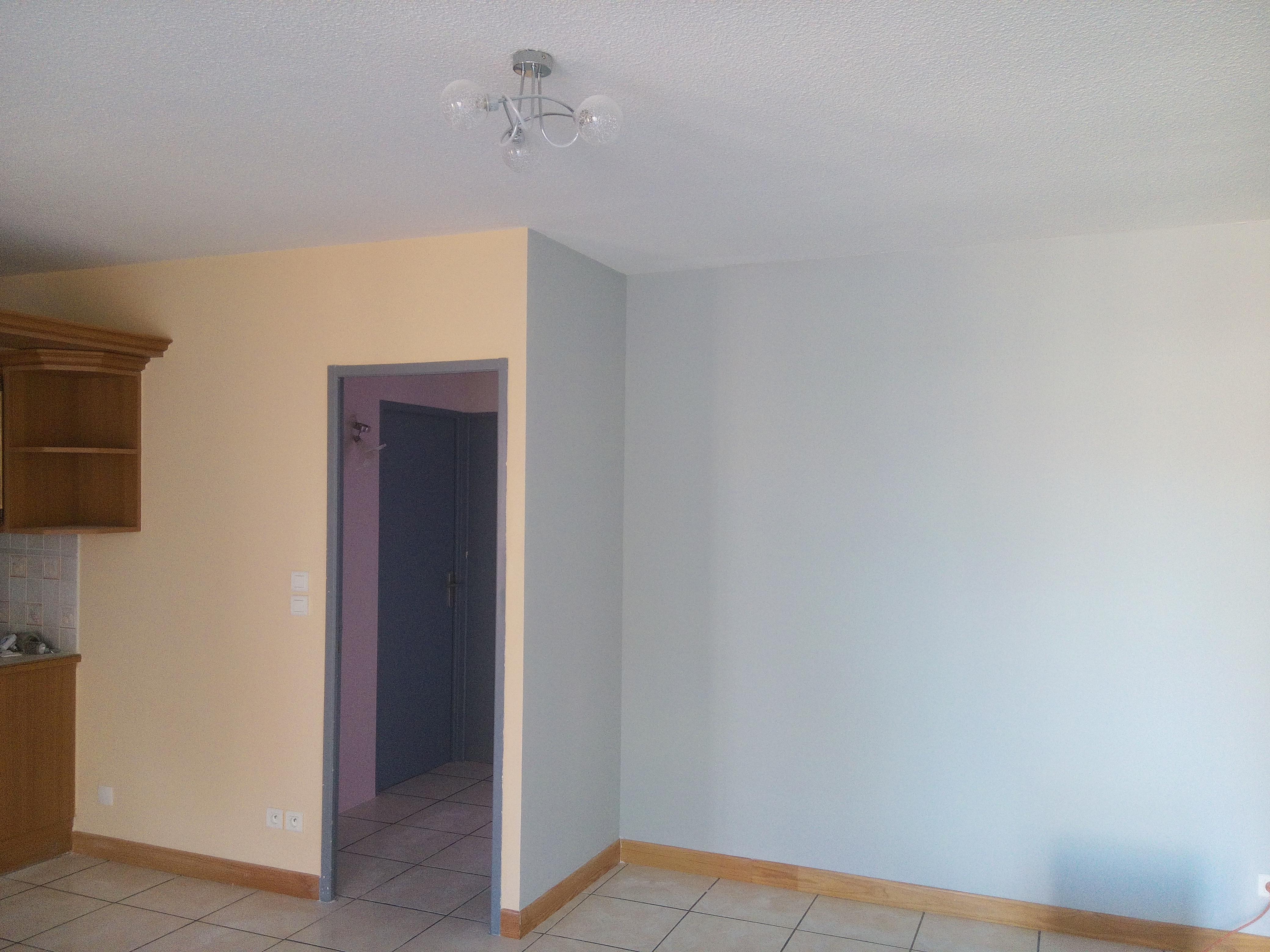 murs salon cuisine