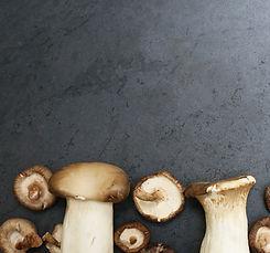 Mushrooms cropped.jpg