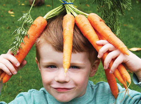 Carrots are not just for eyes!