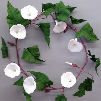 Bindweed Wreath