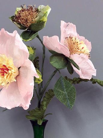 Bramble blossom on three stages