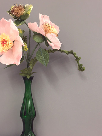 Bramble blossm