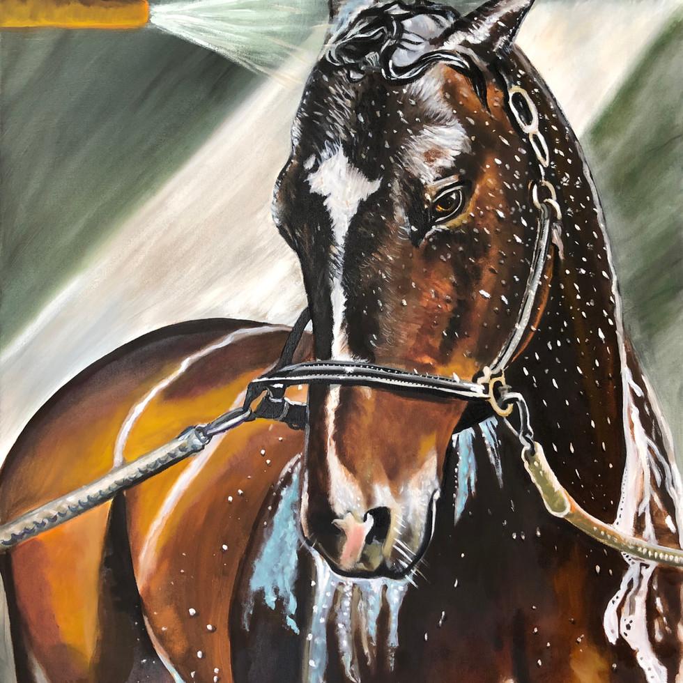 "Media Oil on Canvas 40""x60"""