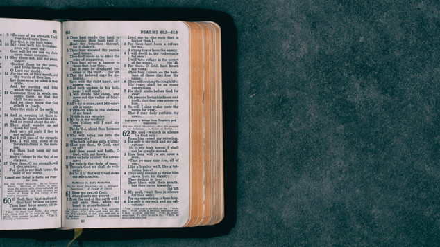 Bible Study + Fellowship