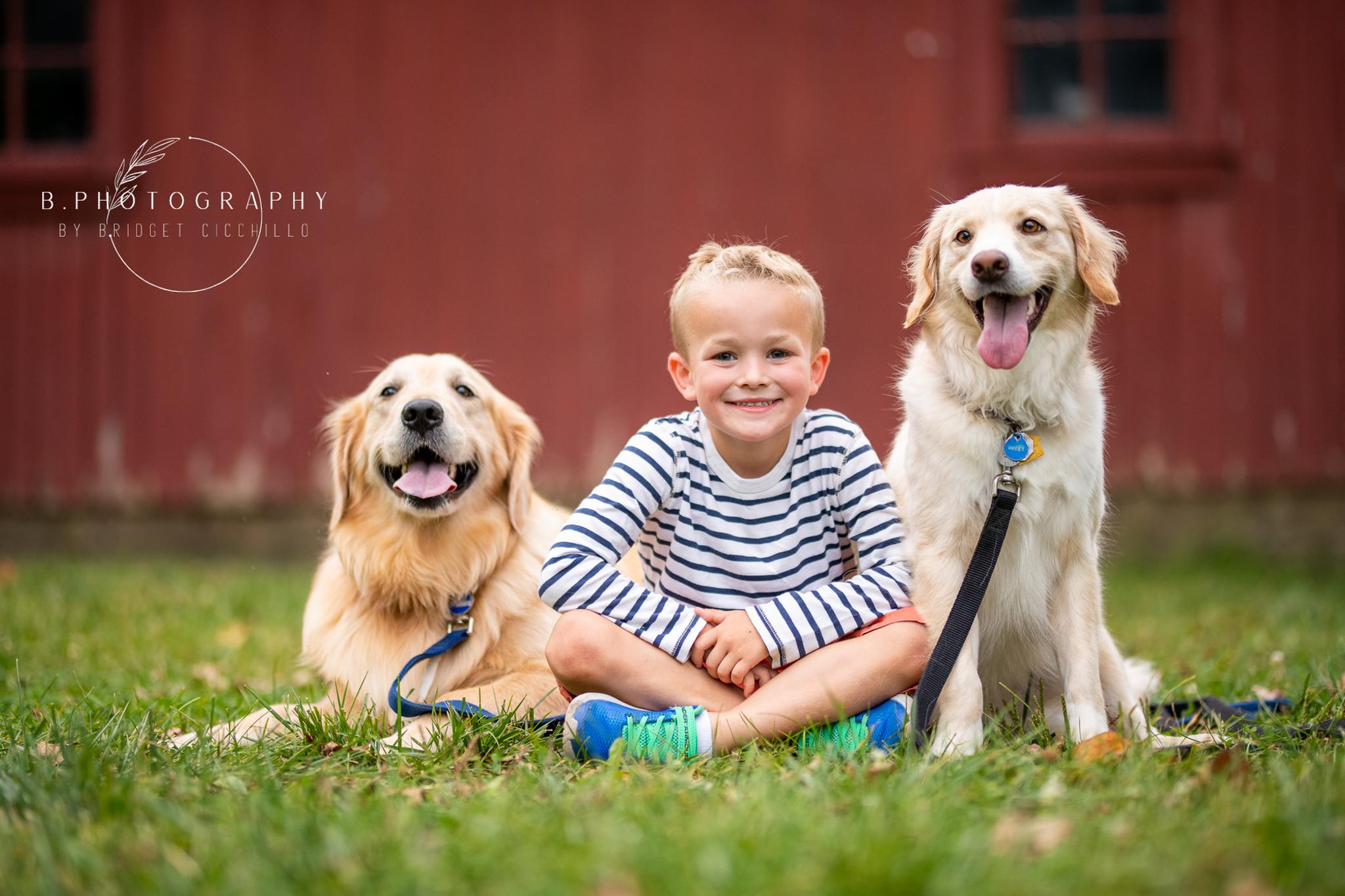 Pet Portraits Benefiting HSHC
