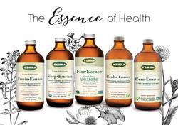 Essence-of-Health-1