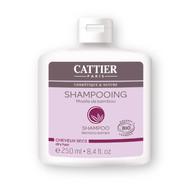 Cattier Bamboo Extract Shampoo