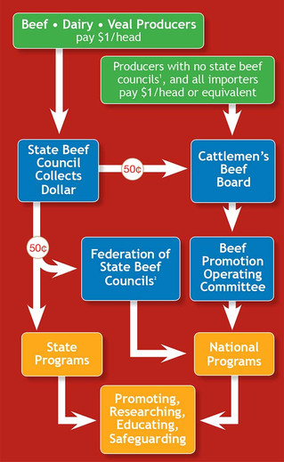 Challenges to Beef Checkoff Fully Warranted