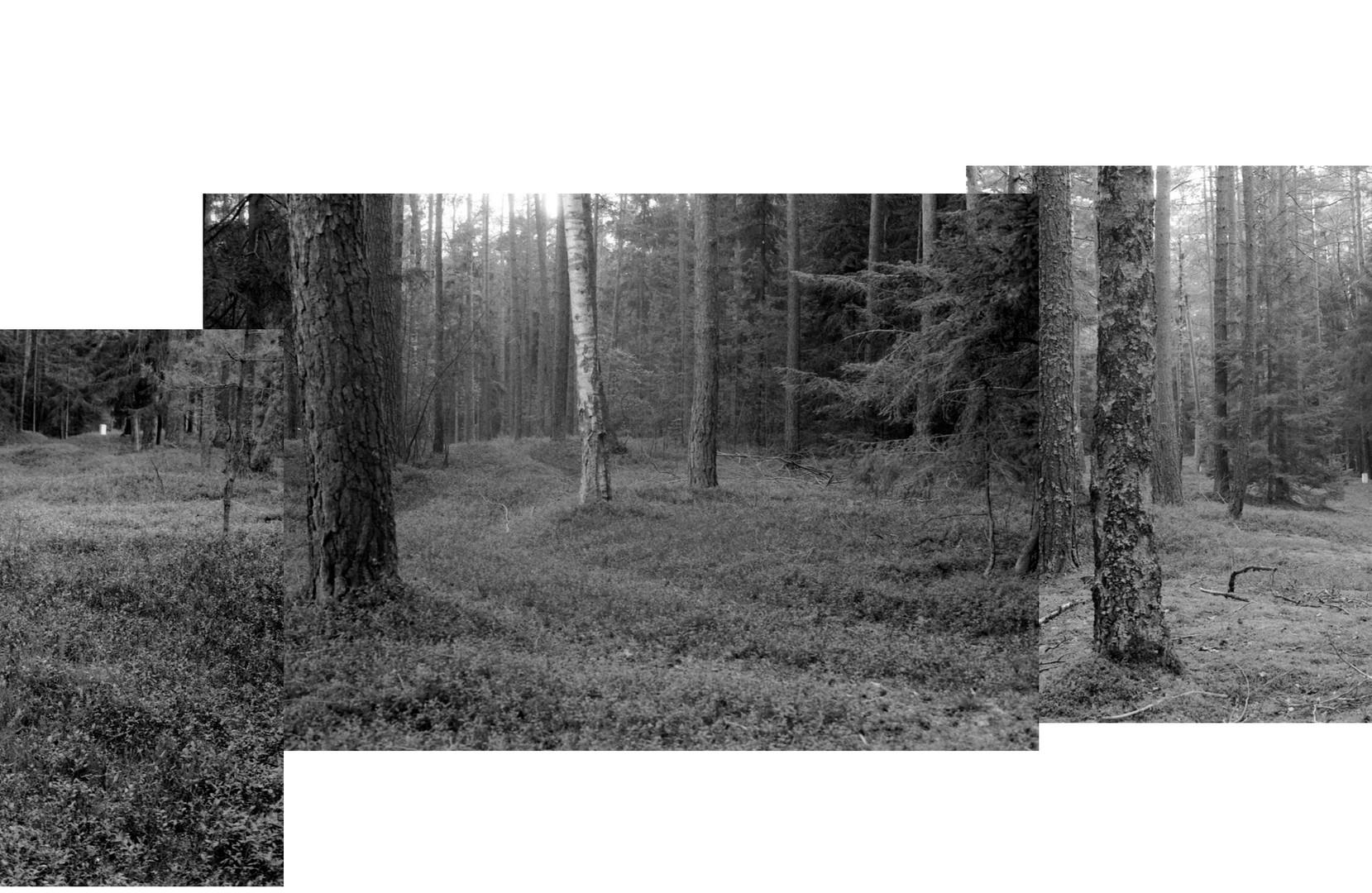 Lestnice-SPLIT_11.jpg