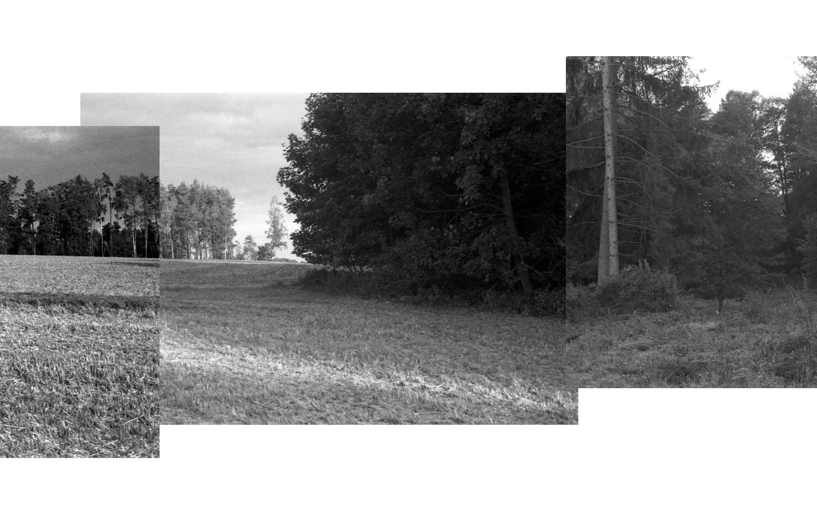 Lestnice_08.jpg