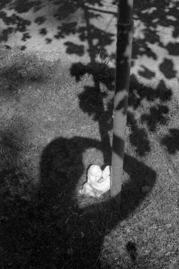 shadow cast-1.jpg