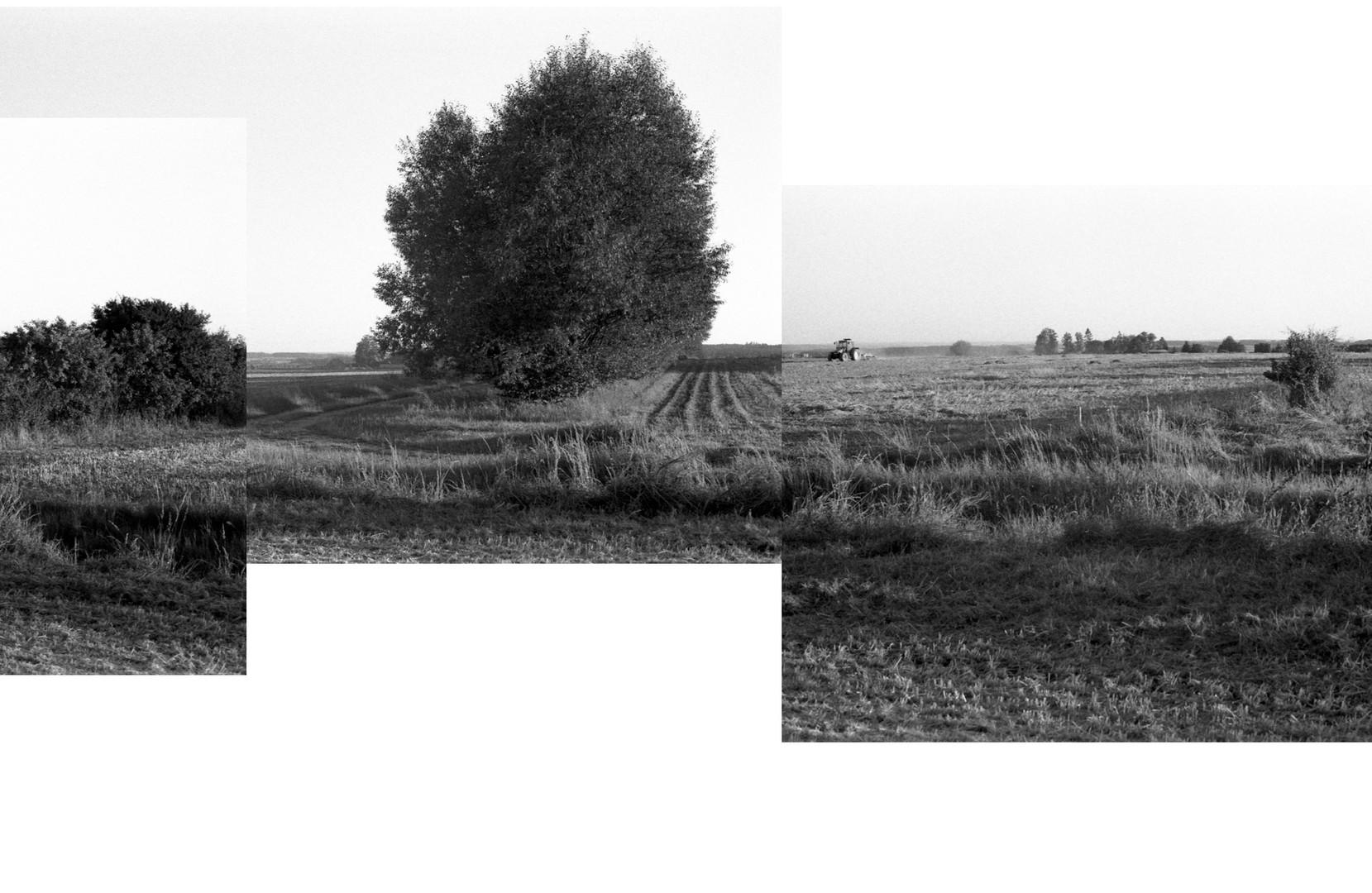Lestnice-SPLIT_04.jpg