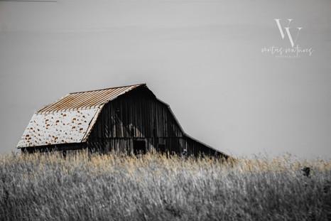 Abandoned Barn Western Kansas