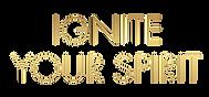 logo-29_5e9d1566dcb863_22857206_edited.p