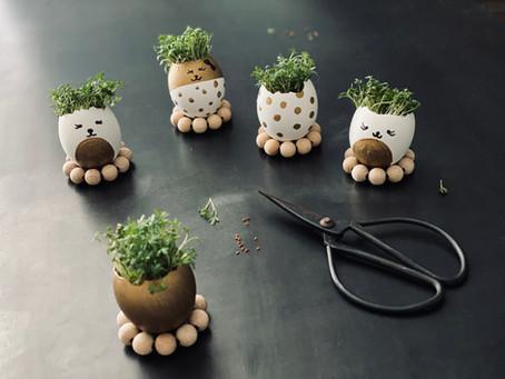 Kresse-Eier à la vrenali.kocht