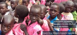 Malaria's Impact