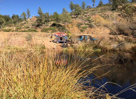 East Verde River - A Day Trip