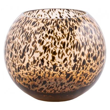 Zambia cheetah