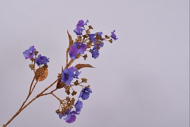 Hortensia goud blauw