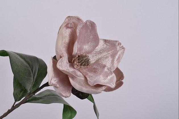 Magnolia Fluweel