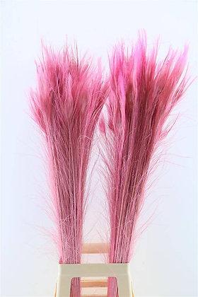 Pauwenveer Roze
