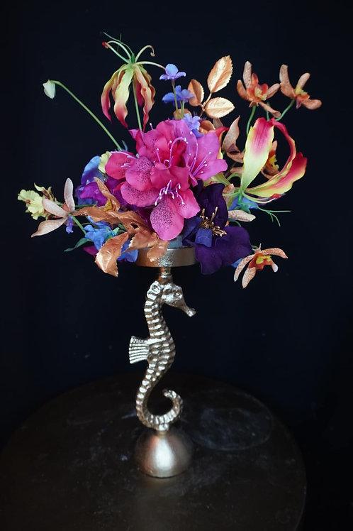 Little color seahorse