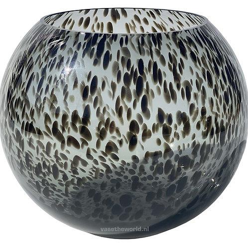 Zambia black cheetah