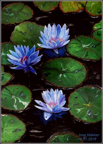 BLUE WATER LILLIES  The painting stimulates the Ajna chakra (third eye), protects the house and owners from any misfortunes, and brings good luck.  A blue water lily or lotus acts as a symbol of the divine, all-seeing eye.   There are many legends about the origin of this wonderful plant. They say that it got its name in honor of the nymphs that live, like these plants, in the water. As is known from Greek mythology, nymphs are deities of nature: forests, mountains, lakes, rivers and seas. Unsurprisingly, flowers named after them are beautiful. In fairy tales, the idea of water lilies is associated with the mysterious image of a mermaid.  The water lily is able to protect people from various troubles while traveling. Going on a long journey, people sewed water lily leaves and flowers into small bags-amulet, carried them with them as an amulet and firmly believed that this would bring them good luck and protect them from misfortunes.